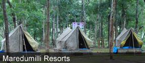Maredumilli Resorts