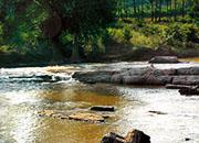Pinjarikonda Waterfall
