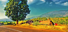 Araku Valley Tour Package From Hyderabad
